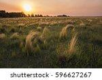 pampas landscape  argentina   Shutterstock . vector #596627267