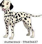vector illustration  funny... | Shutterstock .eps vector #596656637
