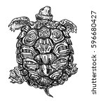swimming turtle with ornamental ...   Shutterstock .eps vector #596680427