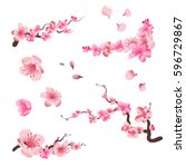 spring sakura cherry blooming... | Shutterstock .eps vector #596729867