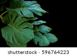 Split Green Large Leaves Of...