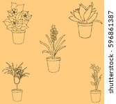houseplants. sketch by hand.... | Shutterstock .eps vector #596861387