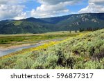 Landscape image shows narrow, Soda Butte Creek as it traverses Lamar Valley, in Yellowstone National Park.