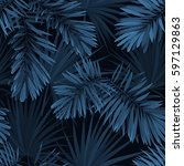 blue indigo summer tropical... | Shutterstock .eps vector #597129863