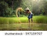 thai farmer  working in farming ...   Shutterstock . vector #597159707