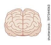 human brain in flat style.... | Shutterstock .eps vector #597344063