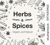 hand drawn herbs and spices... | Shutterstock .eps vector #597455903