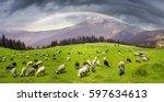 ukrainian alps   the marmarosh... | Shutterstock . vector #597634613