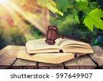 law. | Shutterstock . vector #597649907