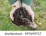 An Earthworm On A Heap Of Soil...