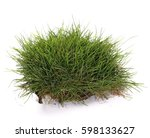 Grass With Dirt  Isolated On...
