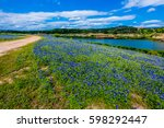 a wide angle view of a... | Shutterstock . vector #598292447