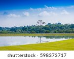 big tree on still water pond... | Shutterstock . vector #598373717
