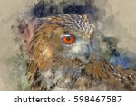 watercolour painting of superb... | Shutterstock . vector #598467587
