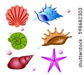 sea shells symbols collection