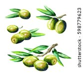 olive set. watercolor | Shutterstock . vector #598779623
