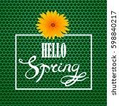 vector hello spring lettering... | Shutterstock .eps vector #598840217