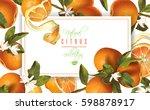 vector mandarin horizontal... | Shutterstock .eps vector #598878917