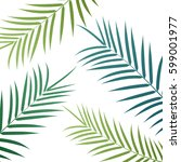 palm leaves background. vector...   Shutterstock .eps vector #599001977