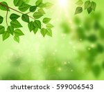 forest background with sun... | Shutterstock .eps vector #599006543