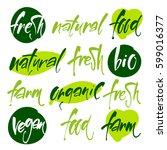 vector illustration food design.... | Shutterstock .eps vector #599016377
