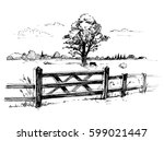 sketches of countryside with a... | Shutterstock .eps vector #599021447