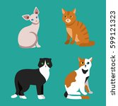 cat breed cute pet portrait... | Shutterstock .eps vector #599121323