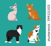 cat breed cute pet portrait... | Shutterstock .eps vector #599121323