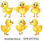 six cute chicks on white... | Shutterstock .eps vector #599197553