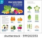 folic acid. food healthy plan... | Shutterstock .eps vector #599202353
