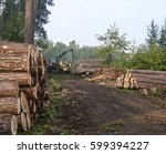 tractor transporting logs of... | Shutterstock . vector #599394227