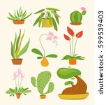 vector set of indoor plants an... | Shutterstock .eps vector #599539403