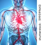3d illustration of heart   part ... | Shutterstock . vector #599599643
