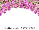 Pink Spring Flower ...