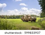 a farm cart loaded with large...   Shutterstock . vector #599833937