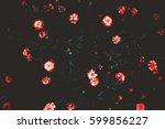 art photography colors. flowers ... | Shutterstock . vector #599856227