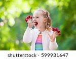 child picking raspberry. kids... | Shutterstock . vector #599931647