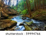 Autumn River In Forest With...