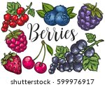 berry color hand drawn vector... | Shutterstock .eps vector #599976917