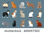 cat breed cute pet portrait... | Shutterstock .eps vector #600047303