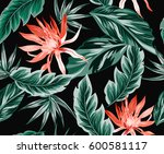 tropical flowers  jungle leaves ... | Shutterstock .eps vector #600581117