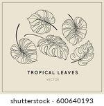 vector jungle leaves set.... | Shutterstock .eps vector #600640193
