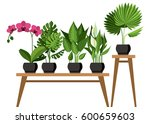 Vector Collection Of Indoor ...