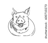 vector sketch of pig | Shutterstock .eps vector #600710273