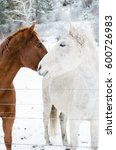 two horses nuzzling each other... | Shutterstock . vector #600726983