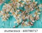 spring flowering branch on...   Shutterstock . vector #600788717