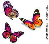 three colorful monarch... | Shutterstock . vector #600840563