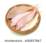 Fresh Red Snapper Fish In...