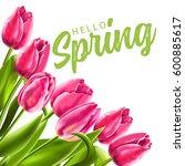 Hello Spring. Vector...