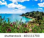 hekerua bay on waiheke island... | Shutterstock . vector #601111703